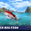 Fishing clash game