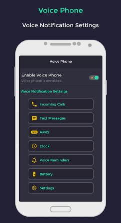 Voice phone
